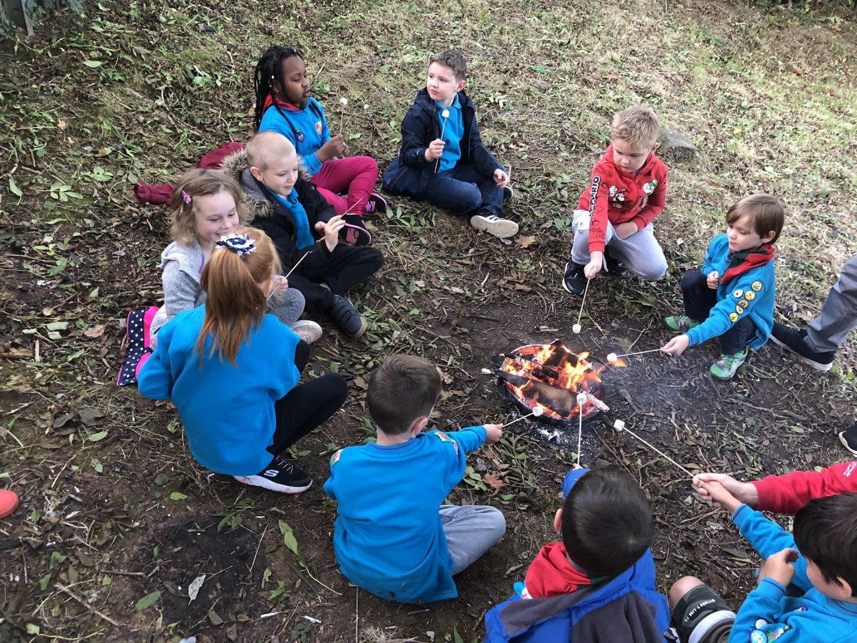 1st Pentwyn Beavers toasting marshmallows